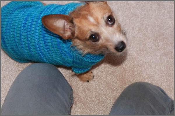 Mountain Sweater 4b