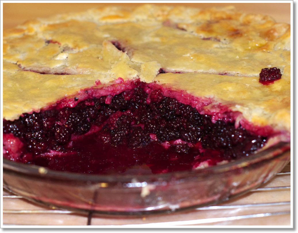 Blackberry Pie 2