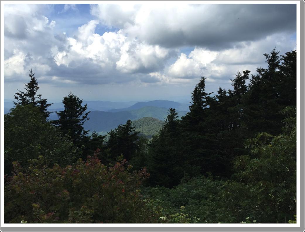 Roan Mountain 2