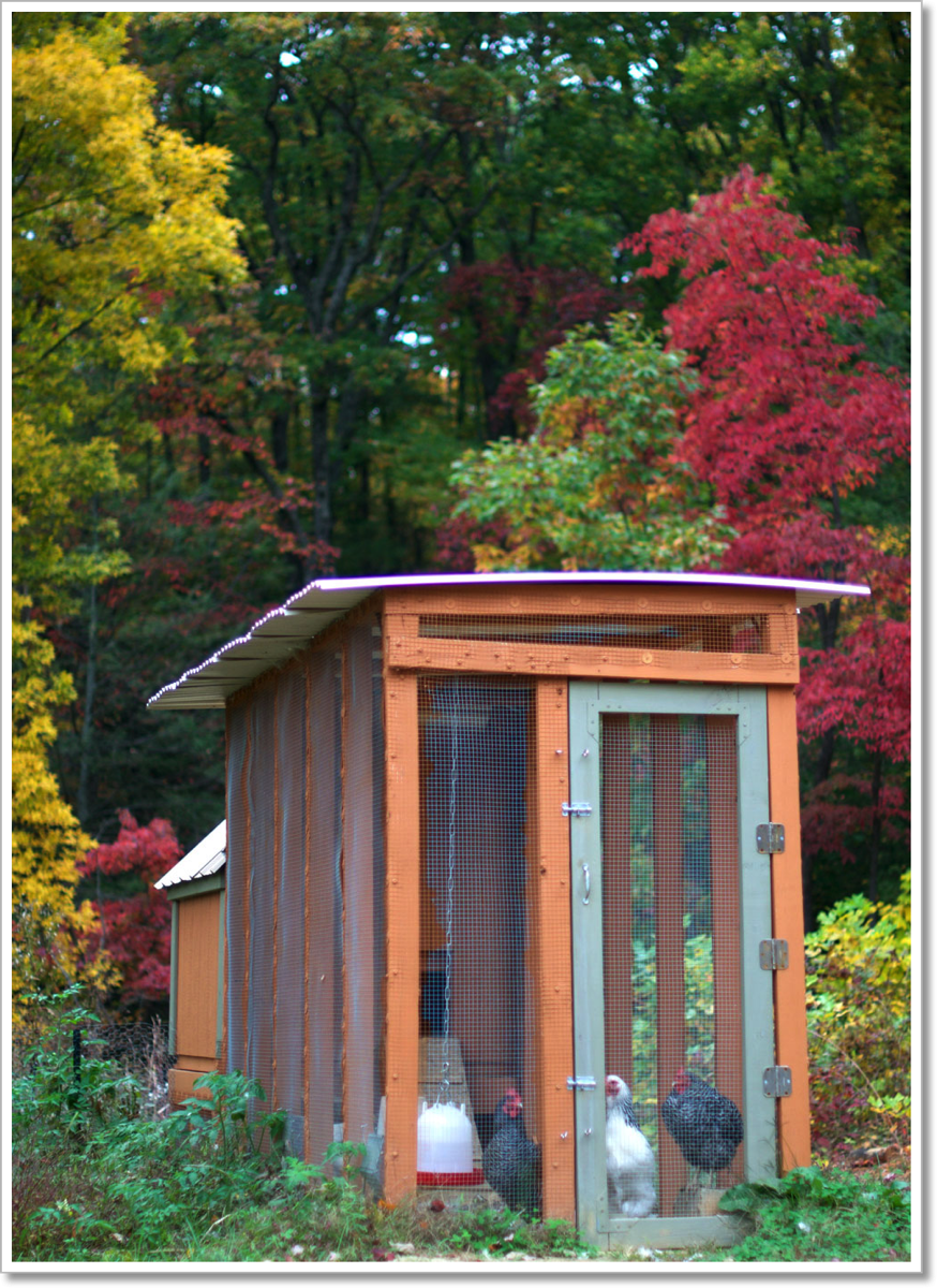 Fall Chicken Coop