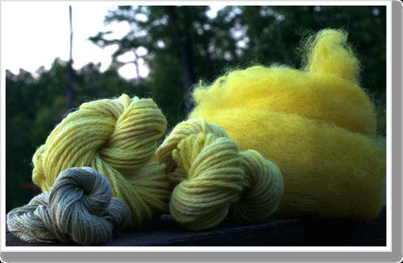 10-dyed-fiber-4